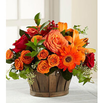C3-5153 The FTD Nature's Bounty Bouquet